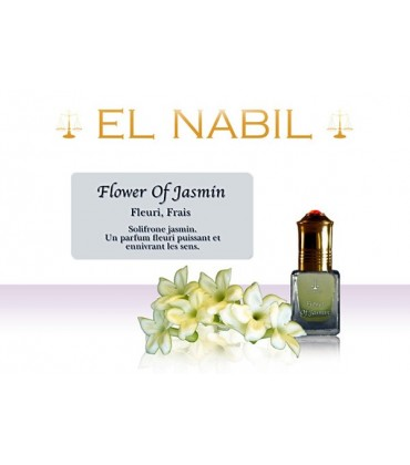 Flower of Jasmin